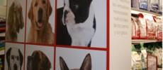 Mobiliario para Tiendas de animales de Compañia / Mascotas